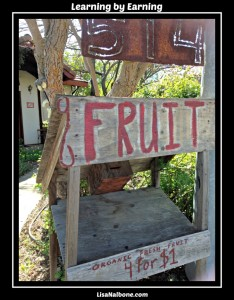 Homemade fruit stand. Learning by Earning  LisaNalbone.com
