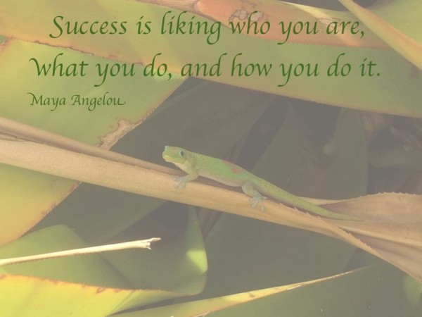 Success quote Maya Angelou lisanalbone.com