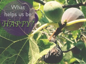 What Helps Us Be HAPPY? Make Your HAPPY Action Plan.