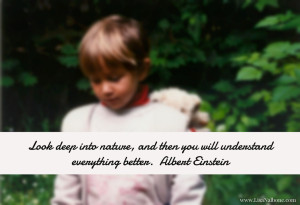 Nature is a learning resource, Einstein nature quote, at www.LisaNalbone.com