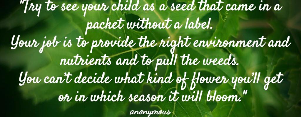 Nurturing Unlabeled Seeds, Allowing Kids to Bloom