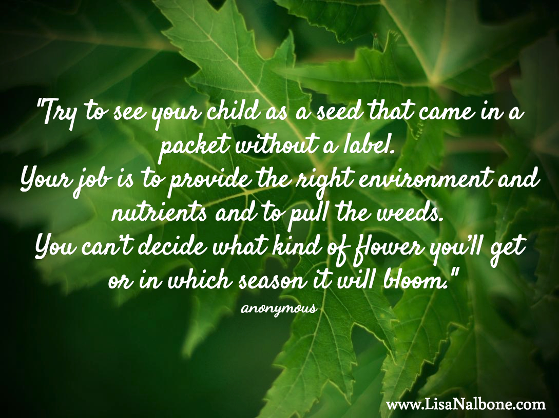 Nurturing Unlabeled Seeds, Allowing Kids to Bloom